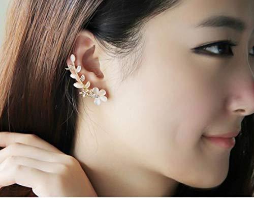 JTSGHRZ Pendientes de Cristal de alas de ángel Plateadas de Plata Cuelga Pendiente de oído Mujeres Pendiente Largo Joyas (Metal Color : Right One)