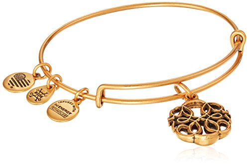 Alex and Ani Lebensweg Charmarmband, Rafaelian Goldton