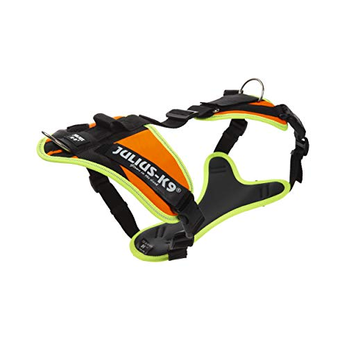 Julius-K9 16MTR-for-M Mantrailing & Outdoor Hundegeschirr, Größe: M, UV orange mit neon Rand