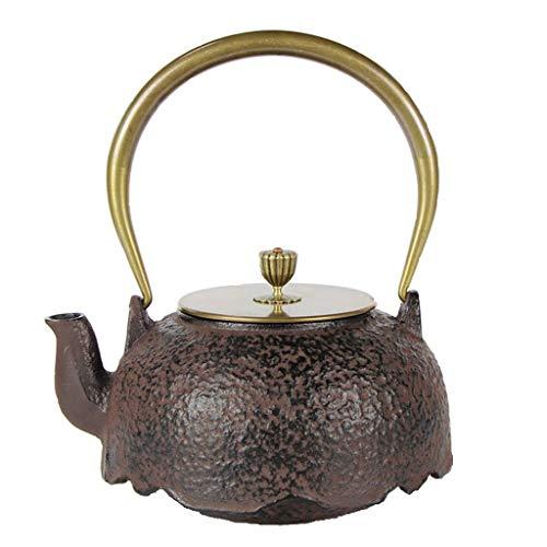 JJZXT Mejor Moldeada China Tetera de Hierro con Acero de Infuser del té, Negro Caldera de té de bolsitas de té, té Flojo