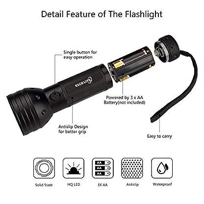 2 Pack UV Flashlight Black Light, Escolite 51 LED 395nm Ultraviolet Blacklight Detector for Dry Pet Urine and Bed Bug 4