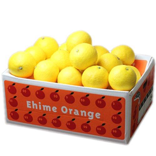 「ファミリー小夏5」愛媛ニューサマーオレンジ(小夏)ファミリー用5kg フルーツ 果物 通販