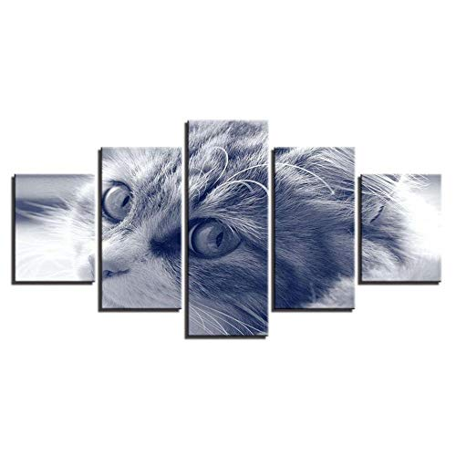 rkmaster Fotobehang met modieuze schilderij op vintage canvas 5-panel-dier, kat frame, modulaire afbeelding, poster en afdrukken op de muur, woonkamer, wooncultuur, vlies