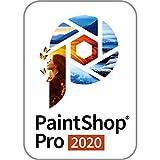 PaintShop Pro 2020 半額キャンペーン版 (最新) win対応 ダウンロード版