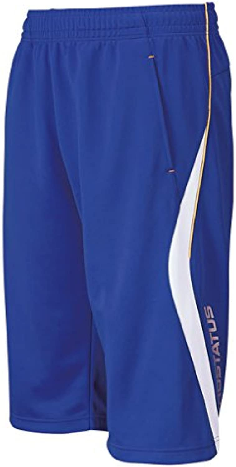ZETT (Gazette) Baseball Training Shorts Purosuteitasu BPRO220HP Royal blueee XO