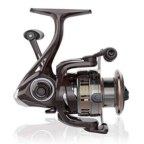 Cadence Spinning Reel-Elate 10+1 BB Light Weight & Durable -Stainless Steel Main Shaft,Die-Casting Handle&Double Anodized Spool-Ultra Smooth Powerful Reel with Graphite Body &Felt Washer