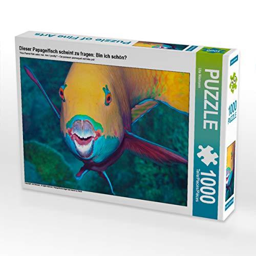 CALVENDO Puzzle Dieser Papageifisch scheint zu Fragen: Bin ich schön? 1000 Teile Lege-Größe 64 x 48 cm Foto-Puzzle Bild von Ute Niemann