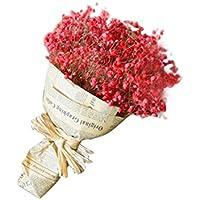 Fablcrew. Ramo de flores secas naturales para decoración floral, ramo de flores, fiesta de boda, flor seca, gypsophila, rojo, 40*20CM