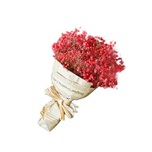 Fablcrew. Ramo de Flores secas Naturales para decoración Floral, Ramo