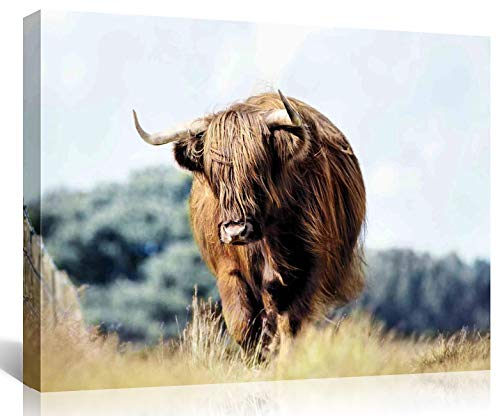 Mooflapha Cow Wall Decor Art Canvas Print Painting 12'' x 16'' Farmhouse Highland Cow Wildlife Animal Poster Decoration Artwork for Home Bedroom Bathroom Kitchen 1 Panel