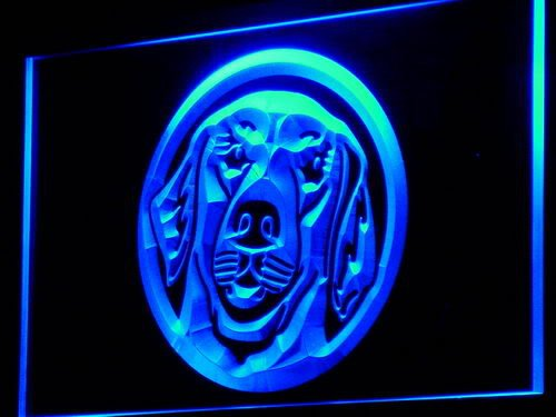 ADV PRO Enseigne Lumineuse i669-b Golden Retriever Dog Shop Pet NR Neon Light Sign