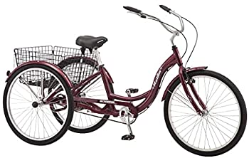 Best 10 speed tricycle Reviews