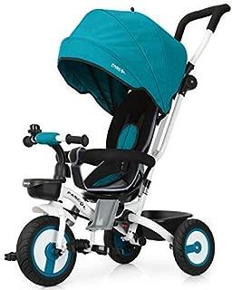 Fascol Triciclo Bebé Plegable 4 en 1 Trike Bicicleta para