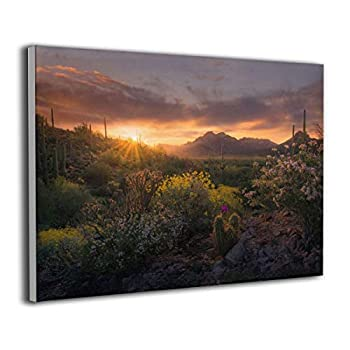 Song Art Canvas Wall Art Prints Cactus Desert Spring Arizona Superstition Mountains -Photo Paintings Modern Decorative Giclee Artwork Wall Decor-16x20 Inch Ready to Hang