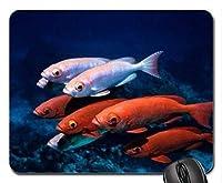 魚をテーマにしたゲーミングマウスパッド、オレンジ魚マウスパッド、マウスパッド