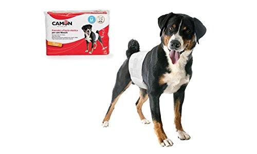 Camon Pannolini usa e getta a fascia elastica per cani maschi Taglia S Diametro 30/46 cm 12 pezzi
