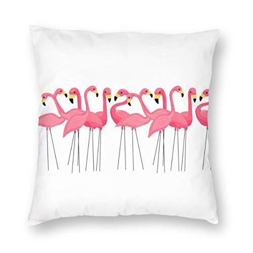 Meius - Funda de cojín con diseño de flamencos de color rosa cubano, terciopelo suave, decorativa, cuadrada, funda de almohada para sala de estar, sofá o dormitorio con cremallera invisible de 20 x 20 pulgadas