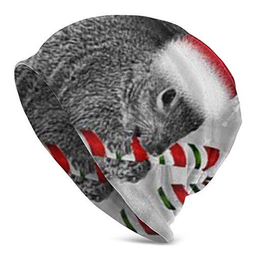 Leila Marcus Ardilla de Navidad, bastón de caramelo, gorro de Papá Noel,...