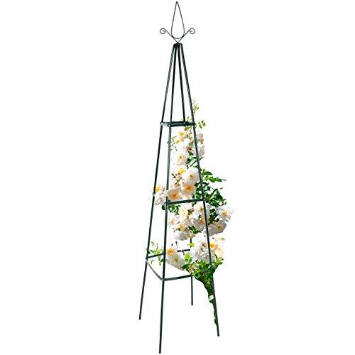 Anaterra Rosenpyramide, Rankhilfe für Pflanzen, Rankgerüst, Rankturm aus Metall, 35 x 35 x 195 cm, 1/2er Set (1 Stück)