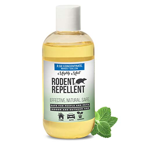 Mighty Mint 8 oz Peppermint Rodent Repellent Concentrate - Makes 1 Gallon - Natural Spray for Rats, Mice, and More - Non Toxic