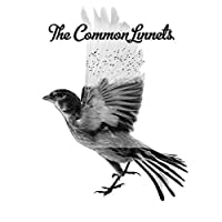 Common Linnets by Common Linnets (2014-07-29)