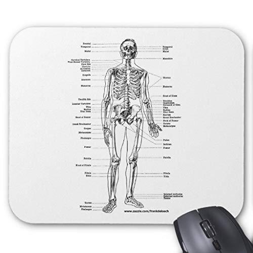 Mauspad, Motiv: Anatomie Skelett-T-Shirts und Geschenke, 45,7 x 55,9 cm