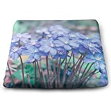 Square Chair Pad Cushion, Early Spring Beautiful Flowers Hepatica Nobilis Pillow Square Meditation Yoga Seating Cushion for Home Decor Garden Party