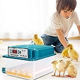 GJCrafts Incubadora de huevos Volteo automático de huevos Pantalla LED digital Mini incubadora automática Adecuado para incubar todas las aves de corral-pollos (Incubadora de 16 huevos(azul))