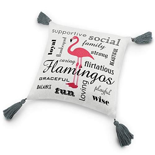 Funda de almohada con inserto de 22 x 22 cm, con diseño de flamenco, con borlas para dormitorio, sala de estar, sofá
