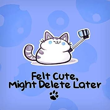 Felt Cute, Might Delete Later