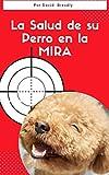 LA SALUD DE SU PERRO EN LA MIRA: Como cuidar a su Perro para mantenerlo...