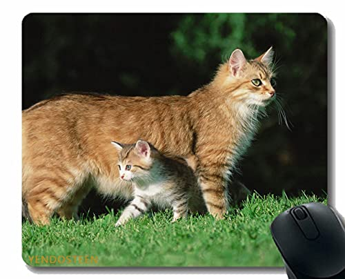 Almohadilla de ratón de Goma Antideslizante, Gato Gatito Hierba 78480 Alfombrillas de ratón con Bordes cosidos