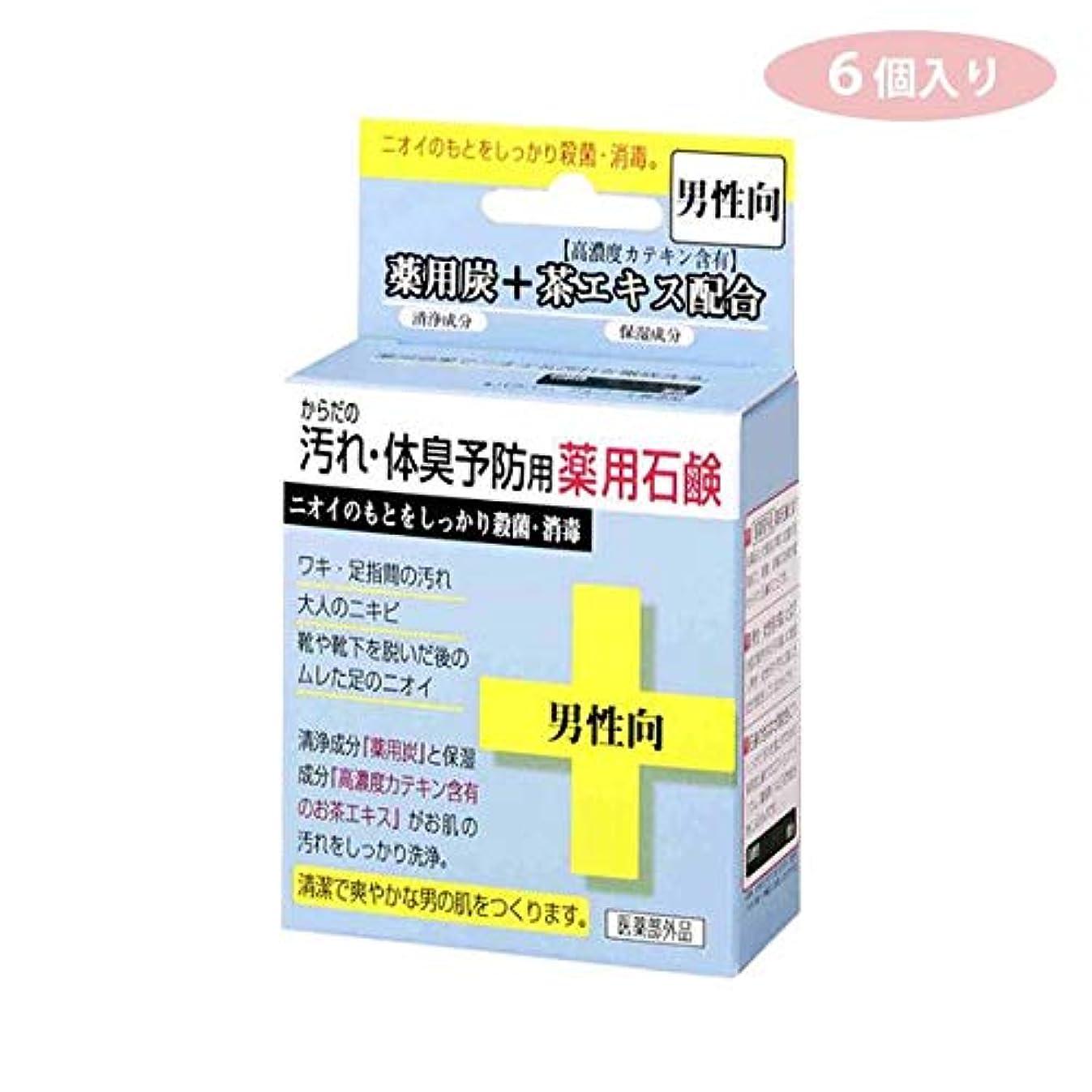 浸漬りんごけがをするCTY-SM 6個入り からだの汚れ?体臭予防用 薬用石鹸 男性向き