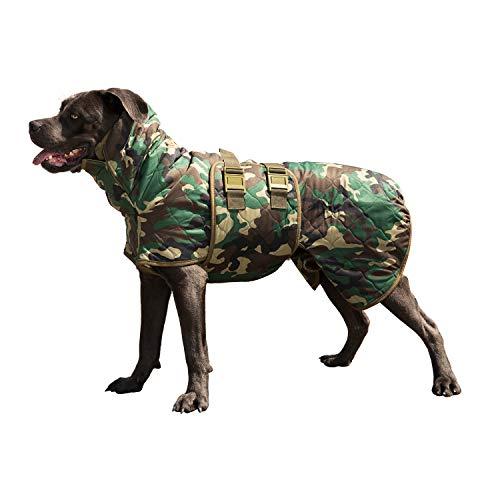 Siccaro Hundemantel WetDog | Extrem saugstarker Bademantel für Hunde | Anti-bakterielle Wirkung | Reduziert Gerüche | Waschmaschinen und trocknergeeignet (Spirit, S)