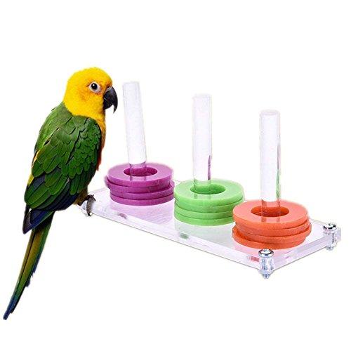 Fablcrew Jouet Educatif Formation Intelligence Développement Interactive pour Perroquet Perruches Pigeons Oiseaux