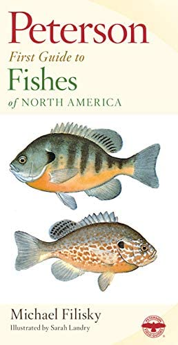 Peterson First Guide to Fishes of North America product image