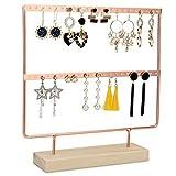 Biewoos Earring Holder 2-Tier Jewelry Display 44 Holes Earring Stand Rack Jewelry Stand Display with Wooden Organizer Ear Stud Earring Holder Organizer for Women Hanging Earrings Holder(Rose Gold)