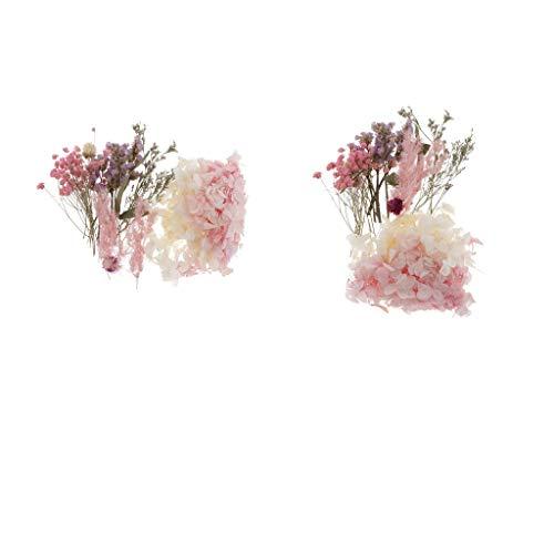 Hellery Natürliche Echte Getrocknete Gepresste Blätter Blumen Für Kunsthandwerk Kerze Seifenkarten (2pcs A)