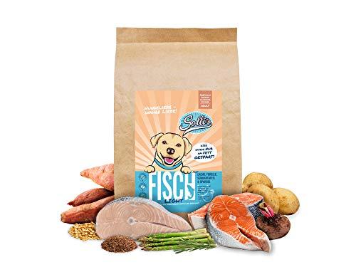 Sollis Hundefutter trocken   Ohne Getreide   Ohne Zucker   Hoher Fleischanteil   Trockenfutter für Hunde (Fisch, 2kg)