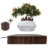 JU&MU Magnetic Levitation Air Bonsai Pot, Creative Mini Sky-Garden Rotating Flower Pot Planter, for Desk Decoration and Gifts (Dark Wood)