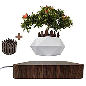 Levitating Air Bonsai Pot Rotation Flower Pot Planters Magnetic Levitation Suspension Floating Pot Potted Plant Home Desk Decor in Flower Pots & Planters from Home & Garden on (Dark wood)