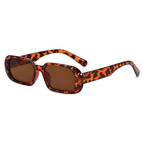 DovSnnx Gafas De Sol Unisex para Hombres Y Mujers Polarizadas Protección UV400 Clásico Vintage Moda Sunglasses Lentes De Té con Montura De Leopardo Divertidas