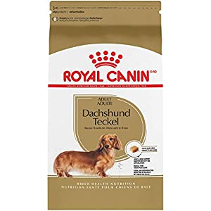 Royal Canin Dachshund Adult Breed Specific Dry Dog Food, 2.5 lb. bag