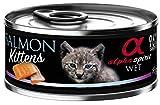 Alpha Spirit Wet Cat Kitten Salmon 85Gr (18Uds)