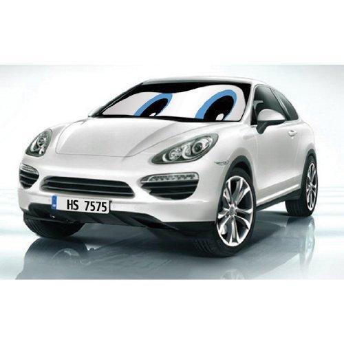HS (12201) blauen Augen doppelseitig Auto Sonnenschutz von HS