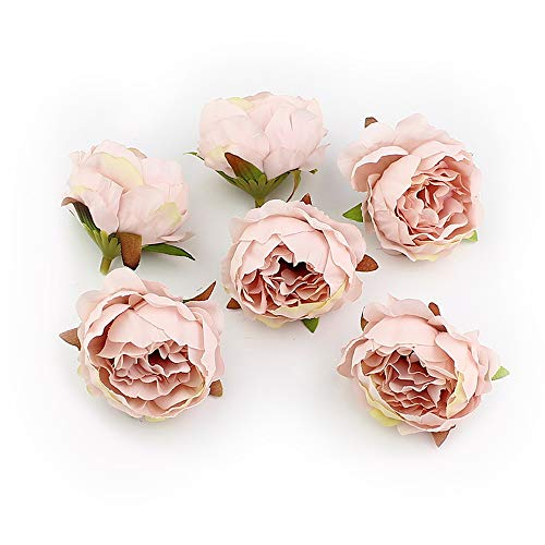 Fake Flower Heads in Bulk Wholesale for Crafts Silk Peony Flower Head Silk Artificial Flowers for Wedding Decoration DIY Decorative Wreath Party Festival Home Decor 15 Pieces 5cm (Champagne)