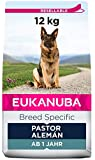 EUKANUBA Breed Specific Alimento seco para perros pastor alemán adultos,...