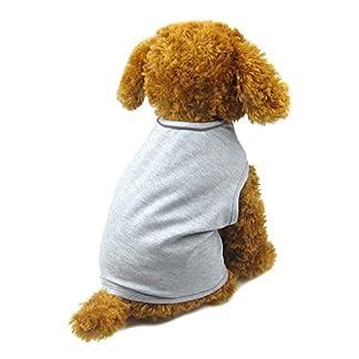 Alfie Pet - Revel Anxiety Calming Wrap Vest for Dog - Color: Grey, Size: Medium 4