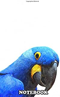 "Notebook: Blue Parrot Portrait Tropical Bird Photography Waterc , Journal for Writing, College Ruled Size 6"" x 9"", 110 Pages"