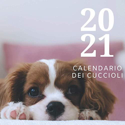 2021 Calendario Dei Cuccioli: Calendario da appendere al Muro con 12 Meravigliose Foto di...